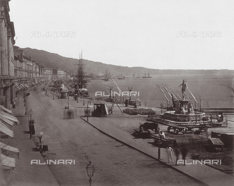AVQ-A-001439-0048 - Corso Vittorio Emanuele in Messina with the Fountain of Neptune and the Prefecture - Data dello scatto: 1870 ca. - Archivi Alinari, Firenze