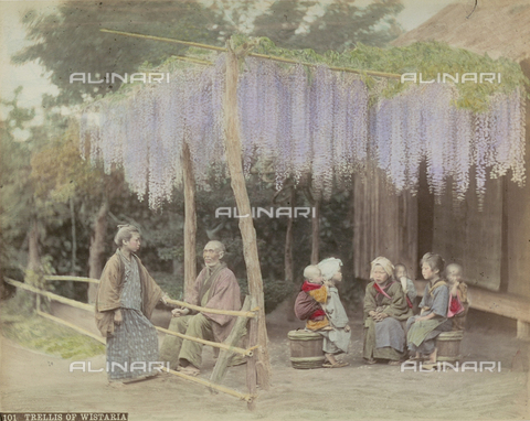 """AVQ-A-002302-0002 - """"Japan"""" album: group of Japanese under wisteria trellis - Date of photography: 1866-1890 - Fratelli Alinari Museum Collections, Florence"""
