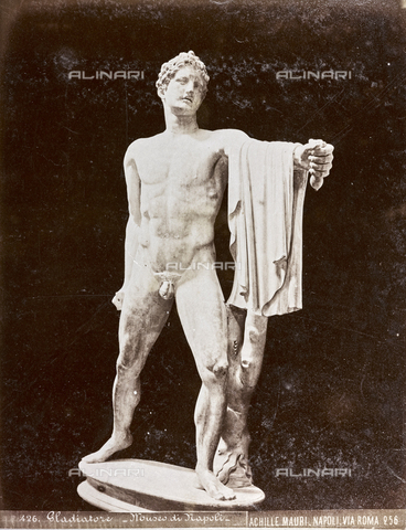 AVQ-A-003747-0024 - Gladiator (or Statue of Fighter), Marble, Antique Art of I-II Sec. BC, Farnese Collection, National Archaeological Museum, Naples - Date of photography: 1872-1882 - Fratelli Alinari Museum Collections, Florence