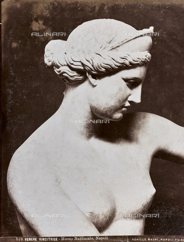 "AVQ-A-003747-0027 - Venus The winner of ""Capua"", detail, marble, Ancient Art of I-II sec. BC, National Archaeological Museum, Naples - Date of photography: 1872-1882 - Fratelli Alinari Museum Collections, Florence"