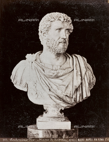 AVQ-A-003747-0029 - Bust by Antonino Pius (by Baja), Marble, Antique Art of II Sec. BC, National Archaeological Museum, Naples - Date of photography: 1872-1882 - Fratelli Alinari Museum Collections, Florence