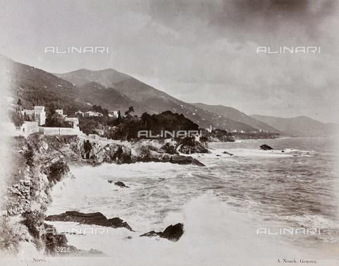 AVQ-A-003747-0054 - Coastal Landscape, Nervi - Data dello scatto: 1870-1880 - Archivi Alinari, Firenze