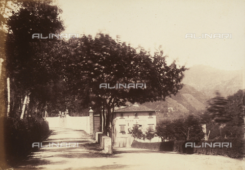 AVQ-A-003862-0087 - Tree-lined avenue in Bagni di Lucca, a Tuscan town near Lucca - Date of photography: 1865 ca. - Fratelli Alinari Museum Collections, Florence