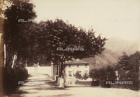 AVQ-A-003862-0087 - Viale alberato a Bagni di Lucca, località Toscana nei pressi di Lucca - Data dello scatto: 1865 ca. - Archivi Alinari, Firenze