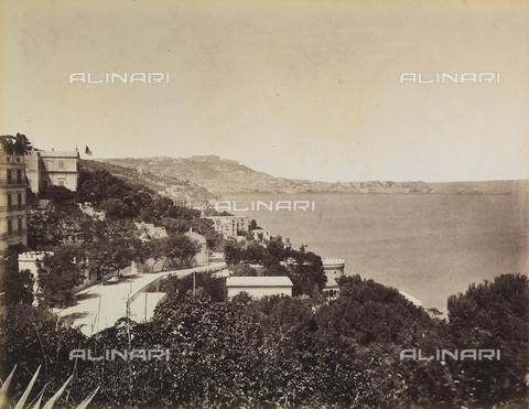 AVQ-A-003971-0005 - Panorama of the coast of Naples seen from the garden of the Rocca Belvedere Hotel in Posillipo - Date of photography: 1890 ca. - Fratelli Alinari Museum Collections, Florence