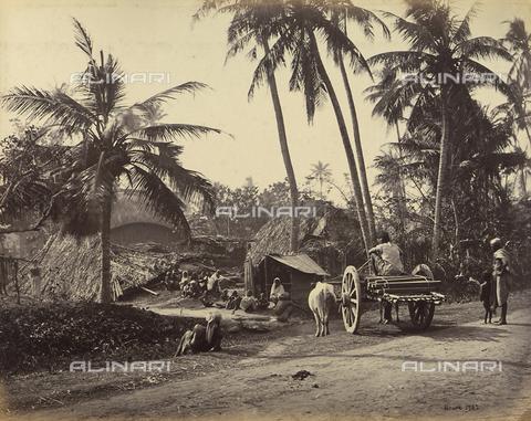 AVQ-A-004121-0011 - Piccolo villaggio del Bengala, in India - Data dello scatto: 1863-1870 ca. - Raccolte Museali Fratelli Alinari (RMFA), Firenze