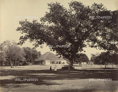 AVQ-A-004121-0049 - Bungalow di un villaggio dell'India - Data dello scatto: 1863-1870 ca. - Raccolte Museali Fratelli Alinari (RMFA), Firenze