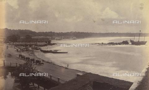 AVQ-A-004121-0055 - Scorcio di una spiaggia dello Sri Lanka - Data dello scatto: 1863-1870 ca. - Raccolte Museali Fratelli Alinari (RMFA), Firenze