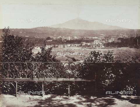 AVQ-A-004127-0017 - Mt. Etna seen from the Bellini Gardens in Catania - Data dello scatto: 1880 ca. - Archivi Alinari, Firenze