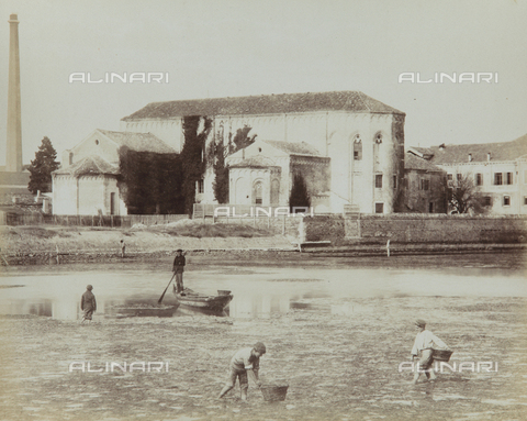 "AVQ-A-004389-0002 - ""Isole della Laguna di Venezia"", animated view of the Island of Sant'Elena, Venice - Data dello scatto: 1880-1890 - Archivi Alinari, Firenze"