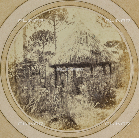 AVQ-A-004912-0018 - A gazebo with thatched roof in the park of Villa Vrindavana, formerly Villa Fenzi, Sant 'Andrea in Percussina, San Casciano val di Pesa - Date of photography: 1890-1900 - Fratelli Alinari Museum Collections, Florence