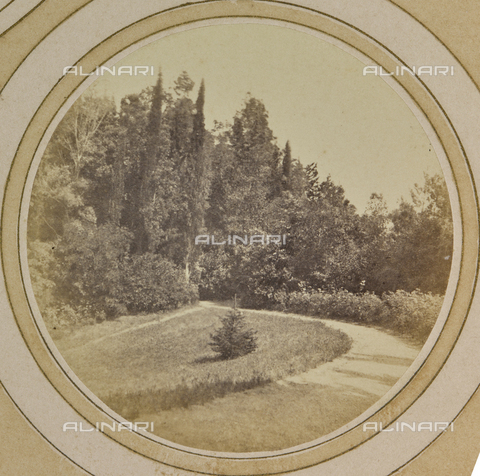 AVQ-A-004912-0045 - Wooded landscape near Villa Vrindavana, formerly Villa Fenzi, Sant 'Andrea in Percussina, San Casciano val di Pesa - Date of photography: 1890-1900 - Fratelli Alinari Museum Collections, Florence