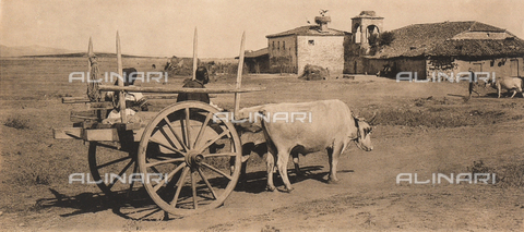 "BAF-A-004894-0095 - ""En Grèce par monts et par vaux"" (""In Greece Through Mountains and Valleys""): a farm in Thessaly - Data dello scatto: 1903-1910 - Archivi Alinari, Firenze"