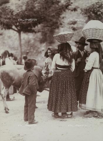 BAQ-F-001135-0000 - Farmers in the countryside of Caserta - Data dello scatto: 1907 - 1913 - Archivi Alinari, Firenze