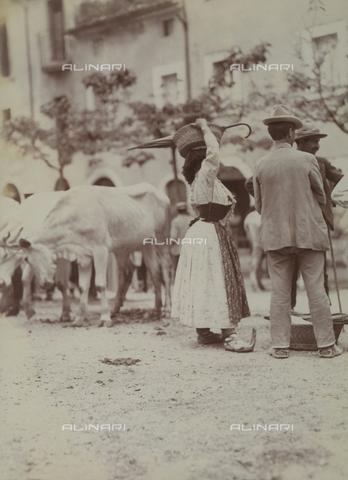 BAQ-F-001136-0000 - Farmers in the countryside of Caserta - Data dello scatto: 1907 - 1913 - Archivi Alinari, Firenze