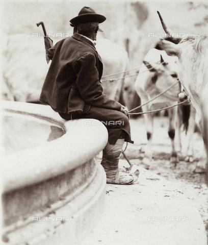 BAQ-F-001193-0000 - Farmer - Data dello scatto: 1903 - Archivi Alinari, Firenze