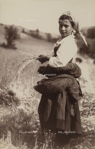 BAQ-F-001293-0000 - Giovane contadina nei campi a Gallinaro, Frosinone - Data dello scatto: 1910 - Raccolte Museali Fratelli Alinari (RMFA), Firenze