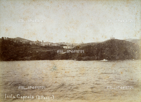 BBA-F-000140-0000 - The Island of Capraia seen from the sea - Data dello scatto: 1870 ca. - Archivi Alinari, Firenze