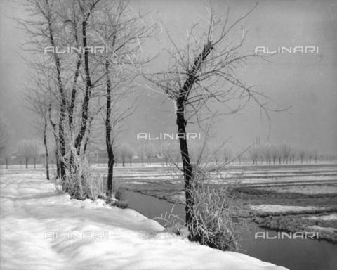 BCA-F-000208-0000 - Winter landscape - Data dello scatto: 1930-1940 - Archivi Alinari, Firenze