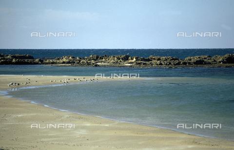 BEN-F-006246-0000 - Panoramica sulla spiaggia di Dor, Dor (Dora), Mar di Cesarea, Tel Dor - Raffaello Bencini/Archivi Alinari, Firenze