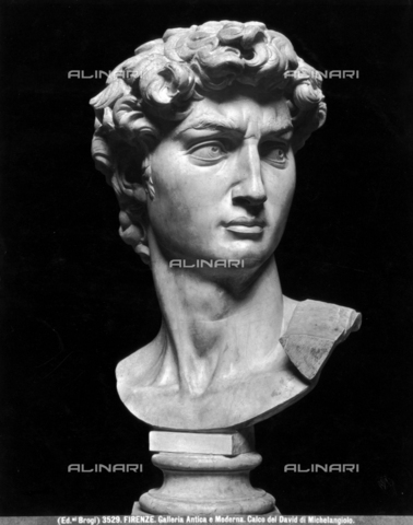 BGA-F-003529-0000 - David's head, cast from Michelangelo Buonarroti's original (1475-1564), Academy Gallery (formerly Antica e Moderna Gallery), Florence - Date of photography: 1890 ca. - Alinari Archives-Brogi Archive, Florence