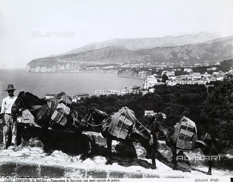 BGA-F-010307-0000 - Man posing next to three mules loaded with stones. In the background, view of Sorrento with the Sorrento Penninsula, near Naples.
