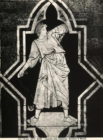BGA-F-013474-0000 - Tarsia del pavimento del Duomo di Siena, raffigurante il giovane David, opera di Domenico di Niccolò - Data dello scatto: 1915-20 ca - Archivi Alinari, Firenze