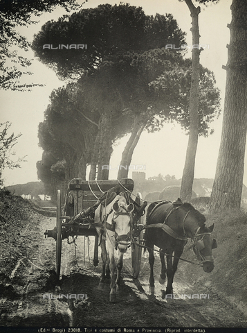 BGA-F-023018-0000 - Along a path in the Roman countryside are two horses carrying a coach.