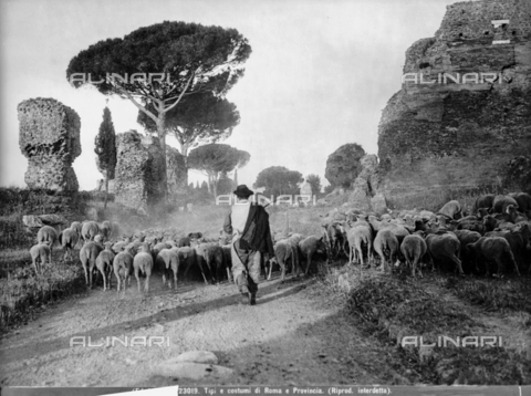 BGA-F-023019-0000 - A shepherd in the roman countryside