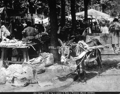 BGA-F-023070-0000 - A cart carried by a mule. The picture was taken in a market street in Rome.
