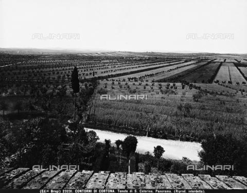 BGA-F-023231-0000 - Cortona (dintorni). Tenuta di Santa Caterina. Panorama - Data dello scatto: 1932 - Archivi Alinari-archivio Brogi, Firenze
