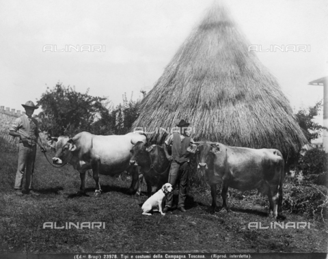 BGA-F-023978-0000 - Men in the traditional dress of the Tuscan countryside