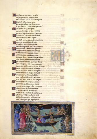 BLB-F-063273-0000 - Manoscritto raffigurante Caronte che traghetta Dante e Virgilio sull'Acheronte,  Inferno canto III -Divina Commedia, miniatura di Priamo della Quercia, 1442-1450, Yates Thompson 36, f.6, British Library - The British Library Board/Archivi Alinari, Firenze