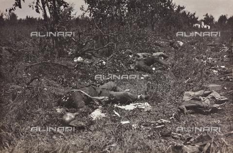 BMD-F-001016-0000 - Prima Guerra Mondiale: cadaveri di soldati - Data dello scatto: 1915-1918 - Raccolte Museali Fratelli Alinari (RMFA)-donazione Miniati, Firenze