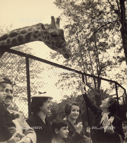 BMD-F-001775-0000 - Family at the zoo in front of the giraffe pen.