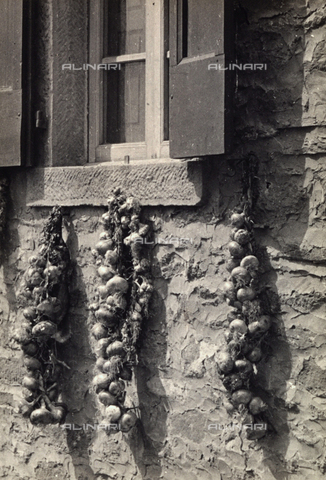 BVA-F-000603-0000 - Garlic hanging at the hall of a house