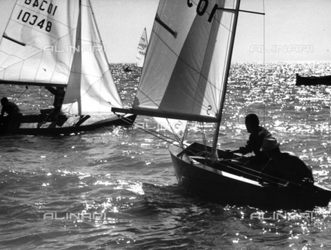 BVA-F-001171-0000 - Photograph showing some small sailboats during a regatta.