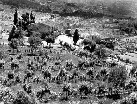 BVA-F-001265-0000 - Panorama of a fields and farms with a large farmhouse at the center - Date of photography: 1930 -1950 ca. - Alinari Archives-Balocchi archive, Florence