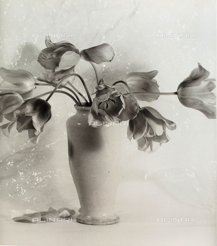 BVA-F-003701-0000 - Vase with tulips.