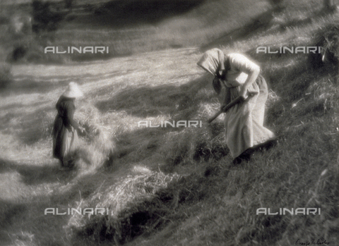 BVA-F-003752-0000 - Two peasants collecting new-cut hay - Date of photography: 1930 -1940 ca. - Alinari Archives-Balocchi archive, Florence