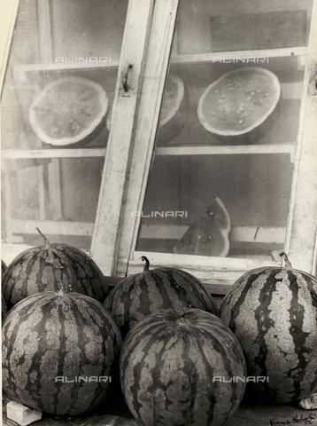 BVA-F-003815-0000 - Watermelons
