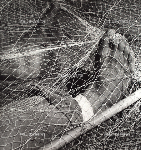 BVA-F-003901-0000 - Piedi in una rete da pesca - Data dello scatto: 1950 ca. - Archivi Alinari, Firenze
