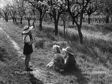 BVA-F-005812-0000 - Kids in a field