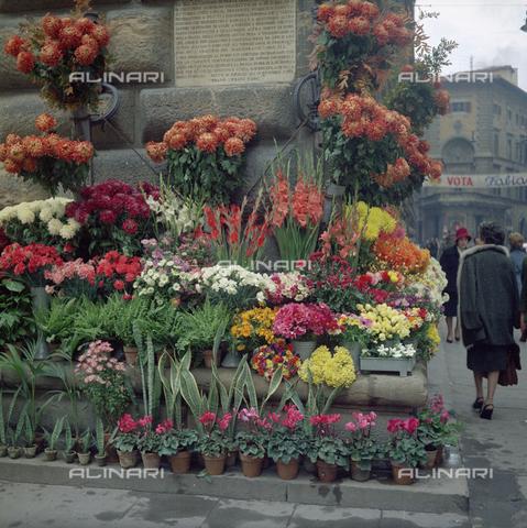 BVA-S-C10013-0009 - Flower Market, Florence