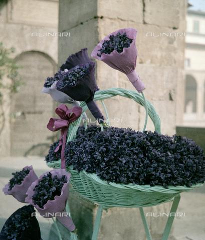 BVA-S-C10018-0015 - Bouquets of violets, Florence