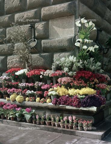 BVA-S-C10027-0014 - Flower market in front of Palazzo Strozzi