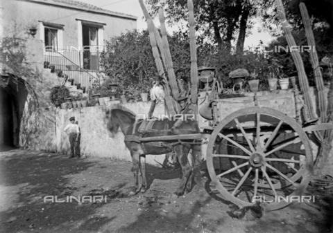 CAD-S-260002-0006 - Ritratto di giovane e bambino vicino a carro trainato da cavallo - Data dello scatto: 1920-1930 ca - Raccolte Museali Fratelli Alinari (RMFA)-donazione Cammarata, Firenze