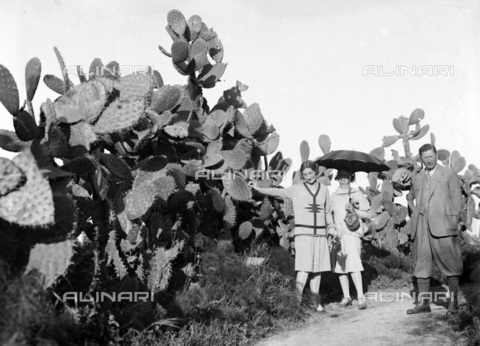 CAD-S-420004-0006 - Group portrait in front of giant cactus plants on the road between Cefalù and Tindari - Data dello scatto: 06/11/1928 - Archivi Alinari, Firenze