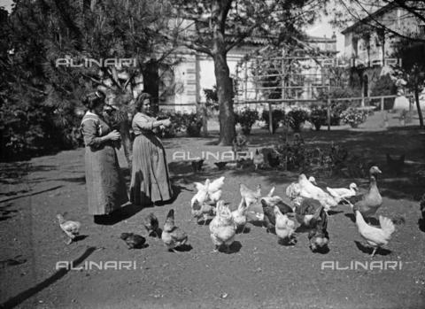 CAD-s-260002-0009 - Ritratto di due donne mentre danno il mangime ad animali da cortile - Data dello scatto: 1920-1930 ca - Raccolte Museali Fratelli Alinari (RMFA)-donazione Cammarata, Firenze