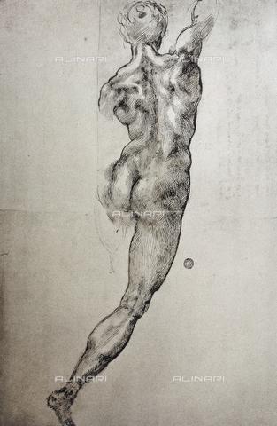CAL-F-003937-0000 - Studio di figura virile nuda, vista di schiena realizzato da Michelangelo e conservato alla Galleria Buonarroti - Data dello scatto: 1997 - Archivi Alinari, Firenze